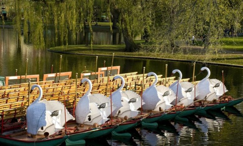 The Swan Boats em Boston